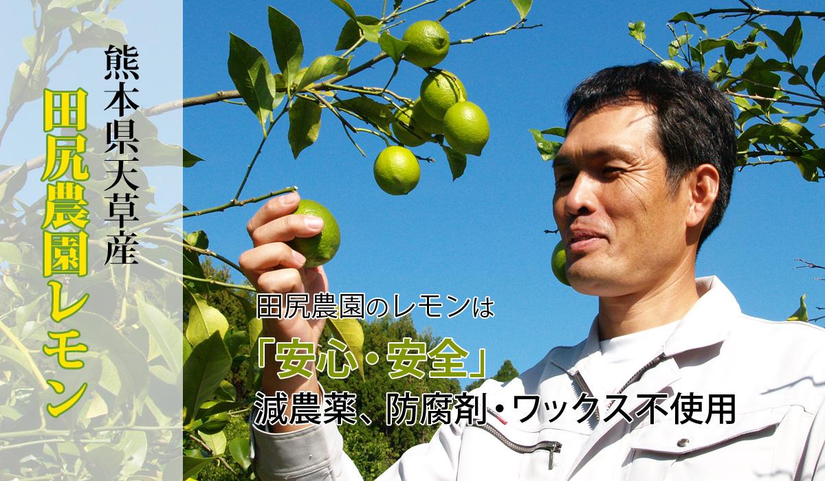 熊本県天草の田尻農園レモン特集